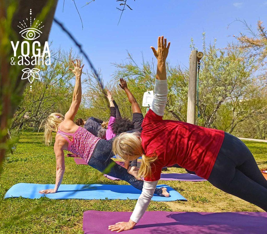 cours de yoga collectif dans un parc à Sète avec le studio Yoga & Asana