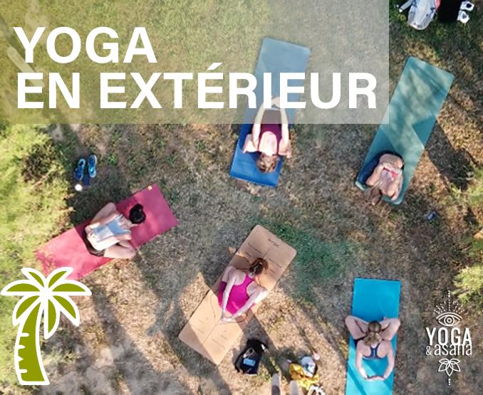 yoga-et-asana-sète-sete-cours-collectifs-hatha-vinyasa-parc-palmier-végétation-villeroy-herault-asana copie