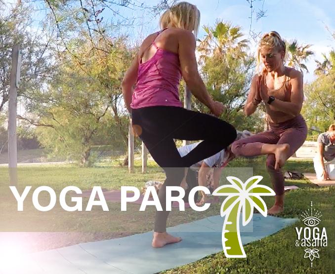 yoga-et-asana-sète-sete-cours-collectifs-hatha-vinyasa-parc-palmier-végétation-villeroy-herault
